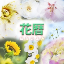 Group logo of 花暦